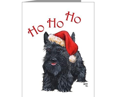 natal Scottish Terrier