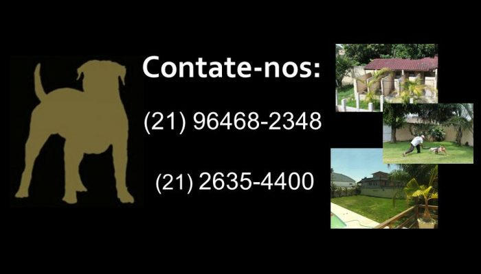 17343045_1308582675884516_4703885574884454018_n